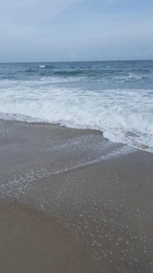 beachpic 1